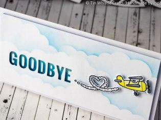 Goodbye Plane-1-3