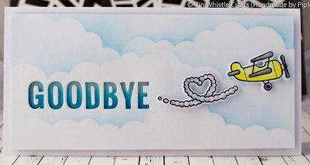 Goodbye Plane-1