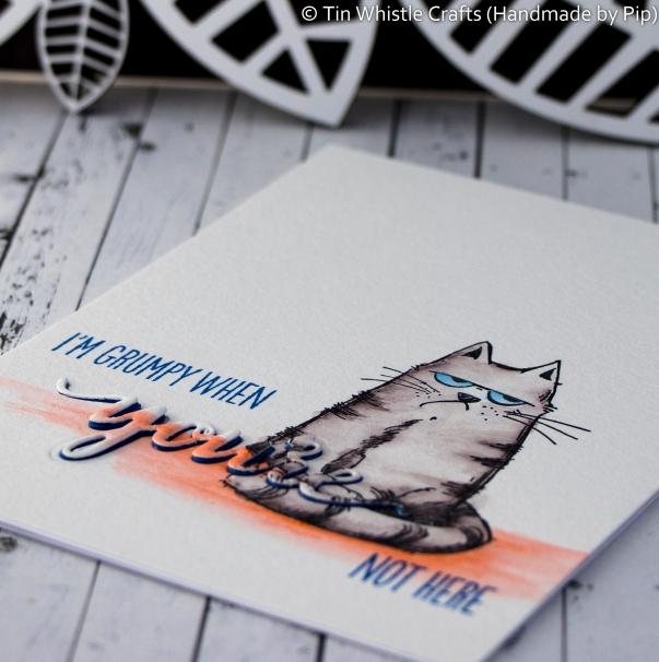 Grumpy Cat-1-2