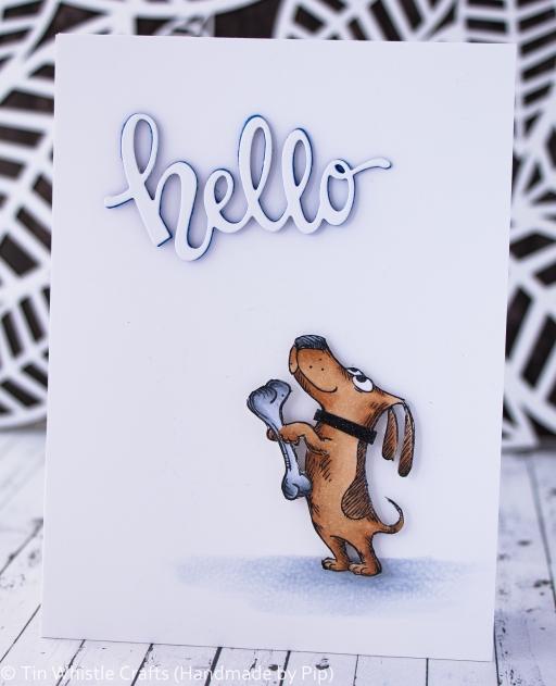 Hello dog-1