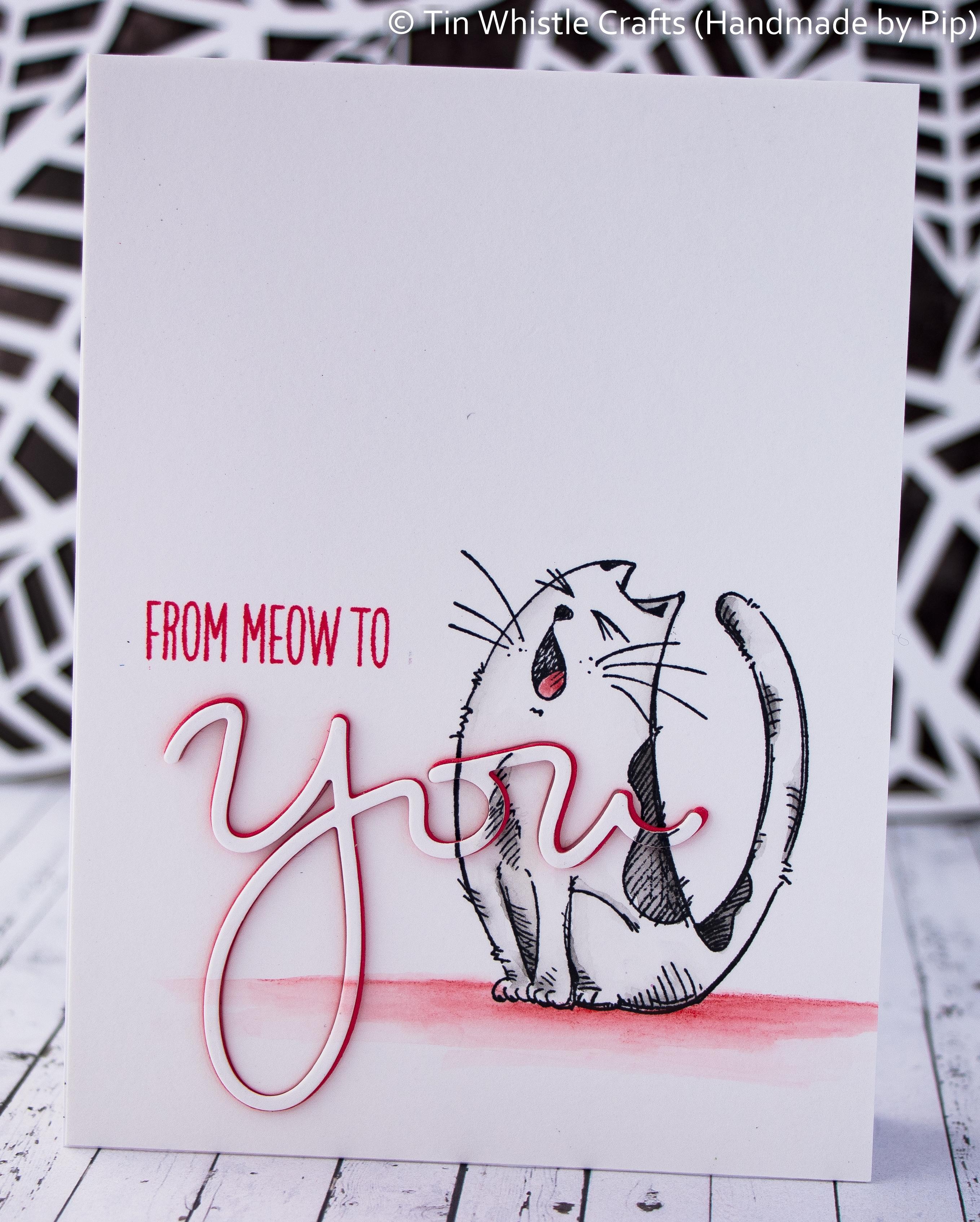Meow Cat-1