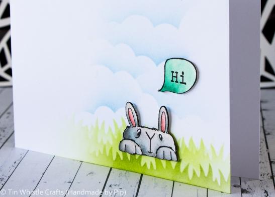 Hi Bunny-1-2