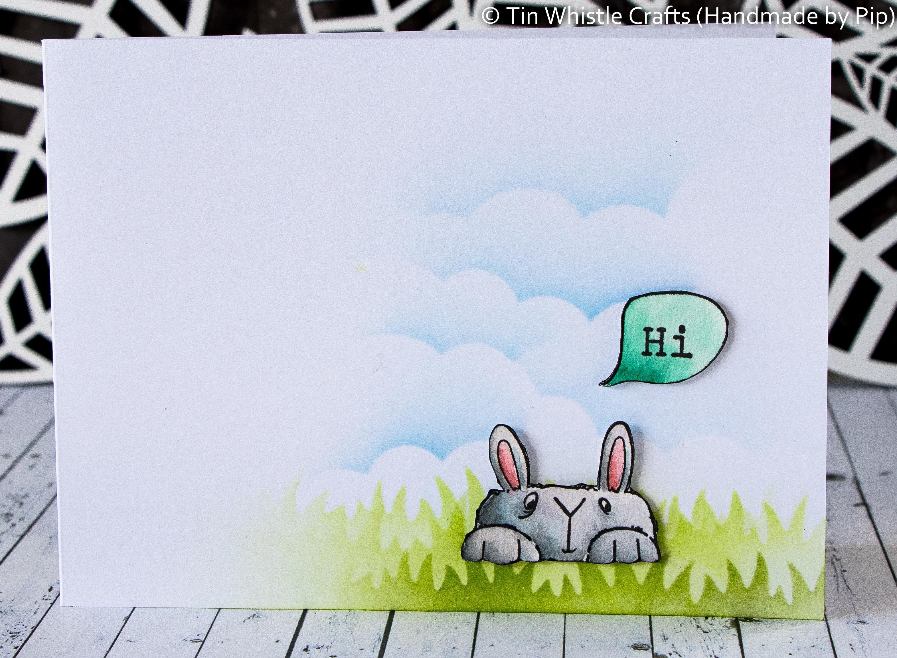 Hi Bunny-1