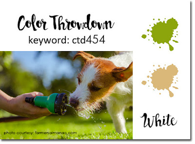 Colorthrowdown 454